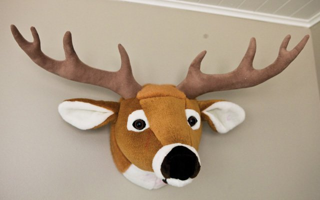 A stuffed deer head from Cabela's hangs in the playroom...