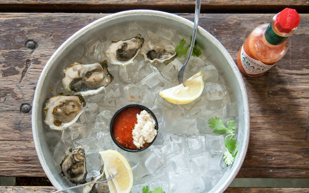 Oysters on the shell at Sea Salt Eatery