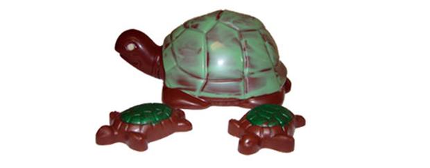 Painted Turtle Chocolatier