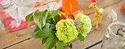 Maven Floral Design