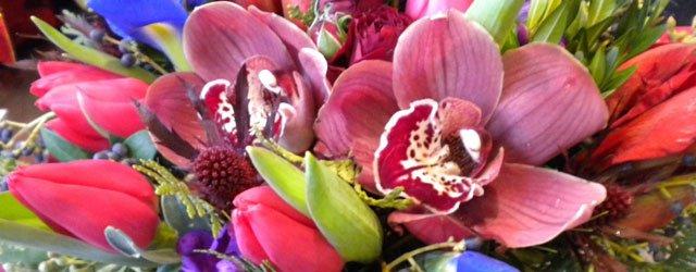 Indulge & Bloom