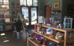 interior of Cocobear Boutique and Pet Care St. Paul