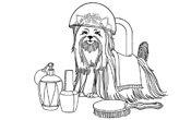 dog-groomer.jpg