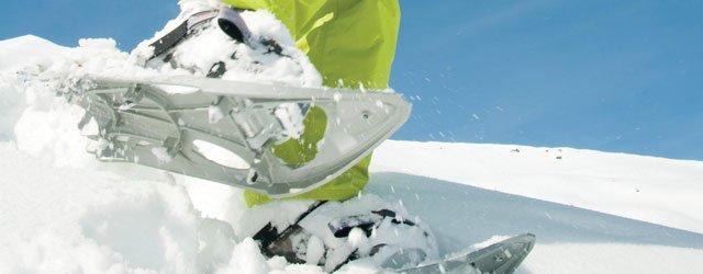 0112-wtr-snowshoe1_640.jpg