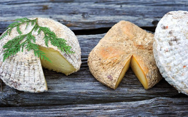 LoveTree Farmstead cheeses
