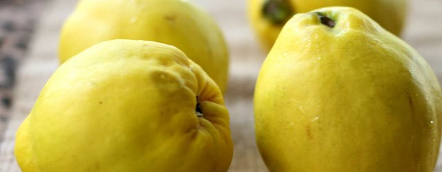 Eat & Tell: What Are Quince?