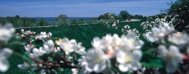 Minnesota's Best Drives: Apple Blossom Byway