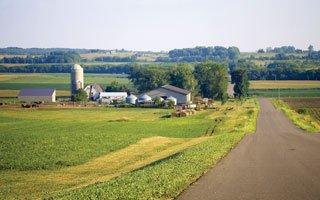 Farmland-(1).jpg