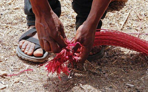0214-OutofAfrica_S03.jpg