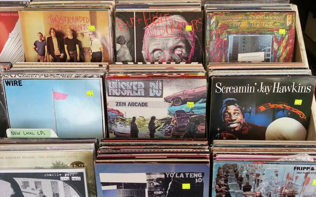 Record bins at Treehouse Records