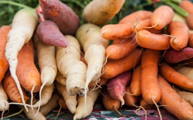 Stacked carrots | photo by Caitlin Abrams