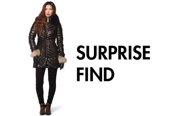 SurpriseFind.jpg