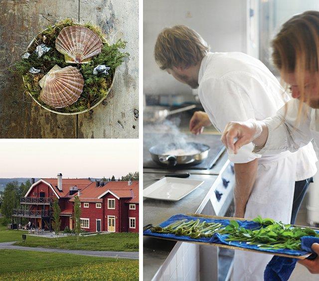 0516-SwedishChef_S05.jpg