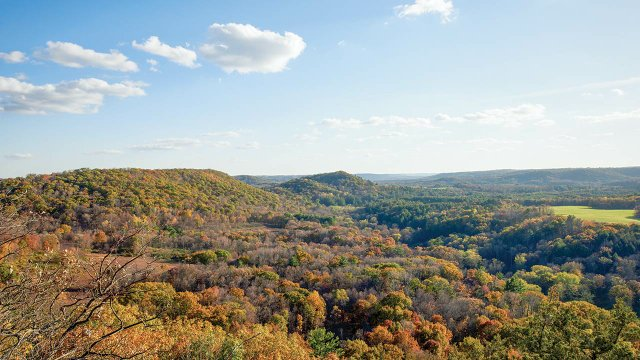 The view from a lookout at Wildcat Mountain State Park in southwest Wisconsin. Glaciers missed the area during the last ice age, which explains the rugged, rolling landscape.