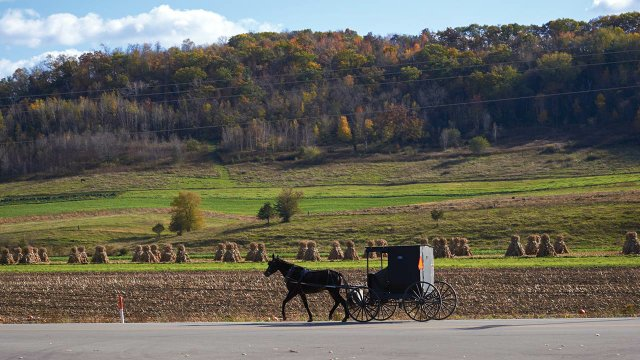 An Amish buggy outside of Viroqua, Wisconsin.