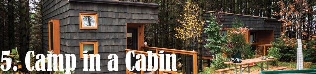 Whitetail Woods Regional Park cabin