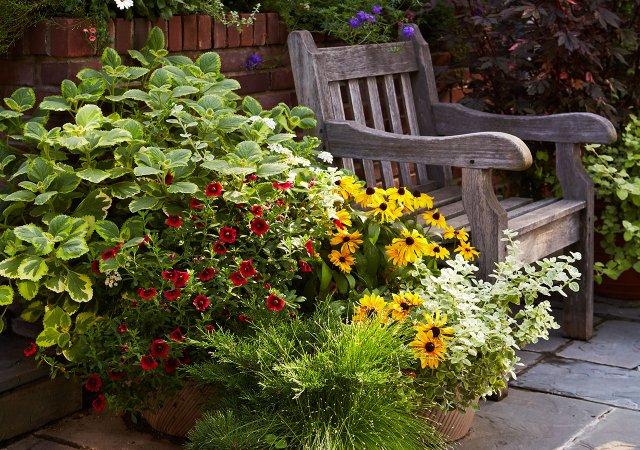 MSP_Garden_Sep_2015-10100.jpg