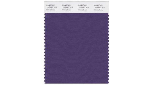 Pantone Prince Purple Reign