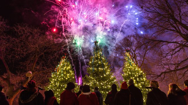 Holidazzle in Loring Park