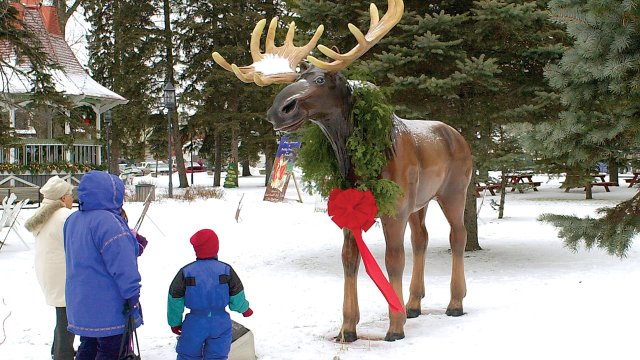Honk the Moose at Biwabik Park