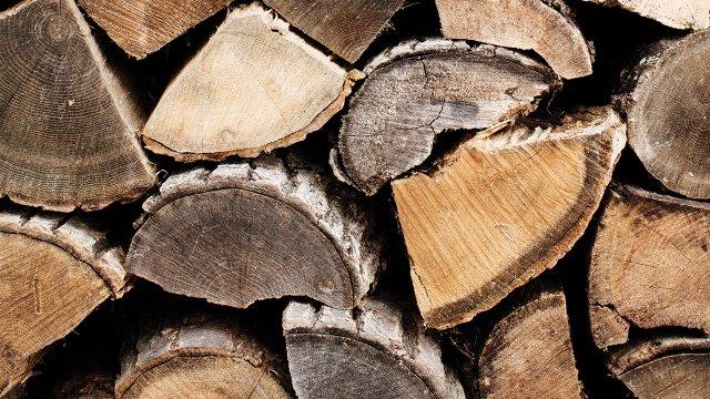07_cut-wood-logs.jpg