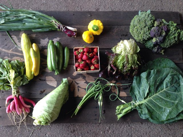 Green Earth Growers produce share