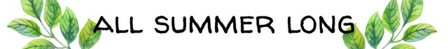 all summer long banner.jpg