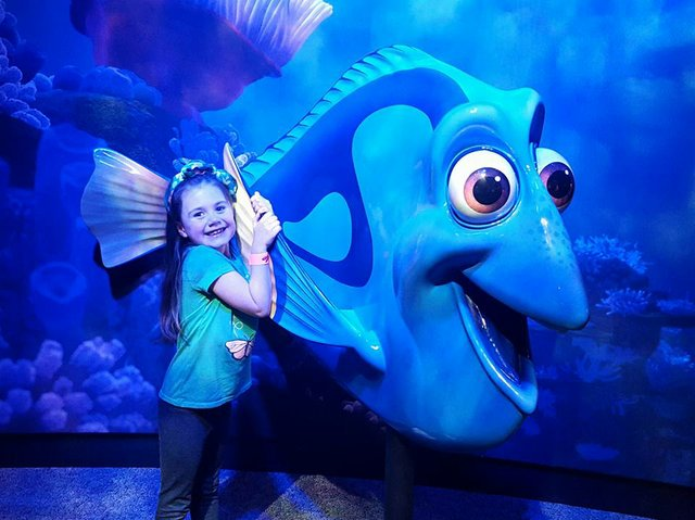 Dory at The Science Museum of Minnesota