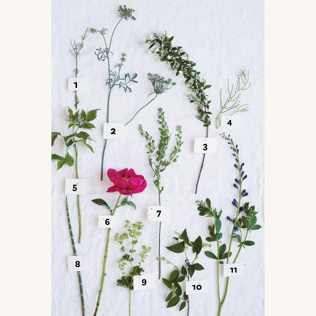Farm-Fresh-Floral---Terry-Brennan.jpg