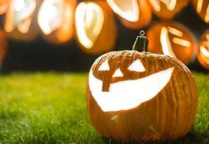 Pumpkin Nights Giveaway