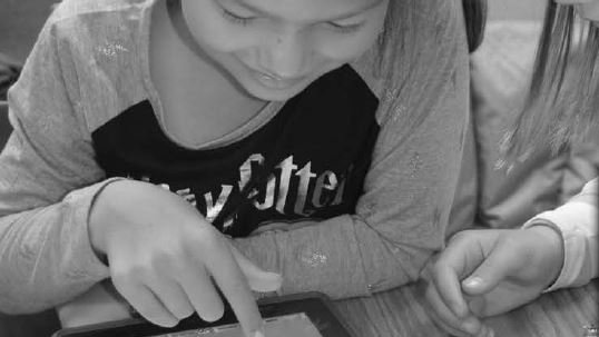 Minnetonka public schools faces 2017