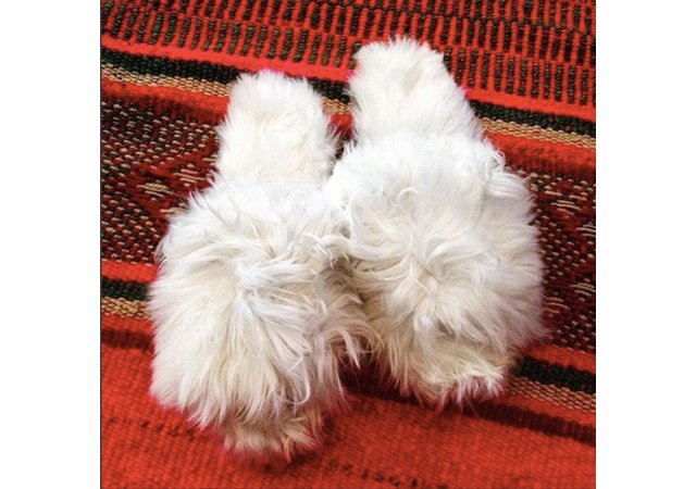 Alpaca-slippers.jpg