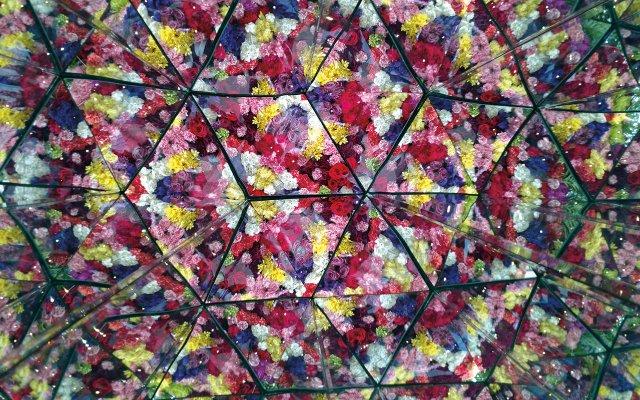 Kohler Dramm Floral Kaleidoscope