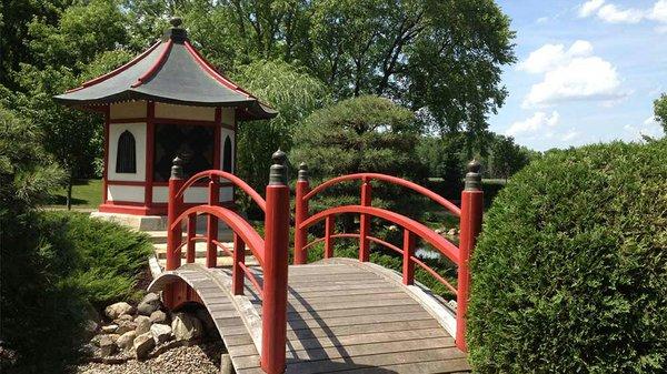 japanese garden.jpg