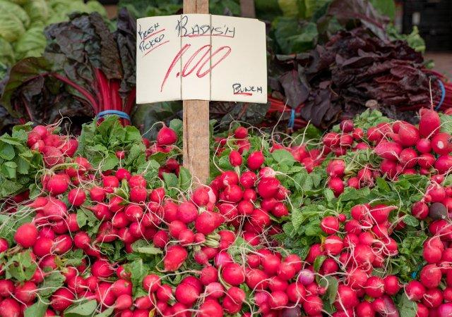 Radishes at a farmers' market
