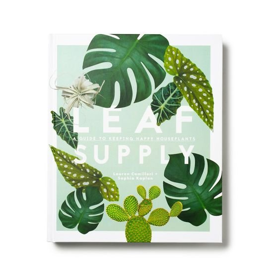 Leaf Supply Book From Target
