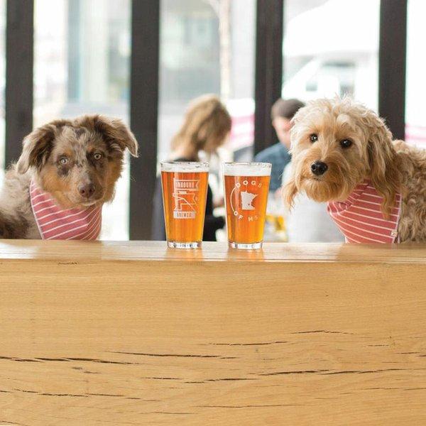 Dogs at Inbound Brewery