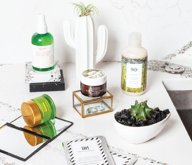 Cactus-based beauty products