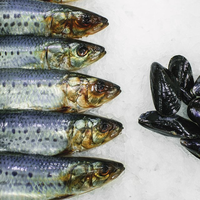 Sardines from Fortune Fish