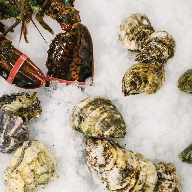 Lobster and oysters at Fortune Fish