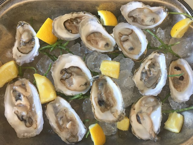 St. Genevieve Oysters