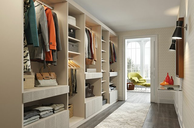 California Closet walk in