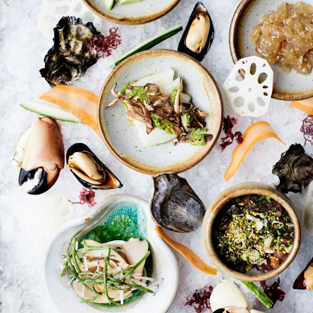 Seafood dishes on ice