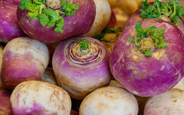 Pile of turnips