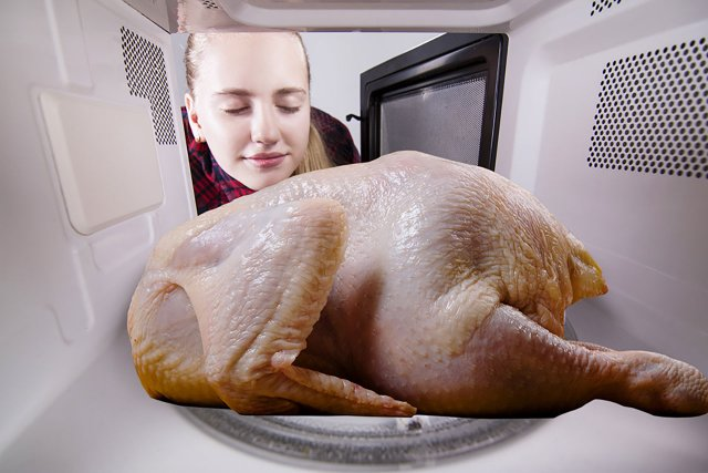 Turkey in a microwave