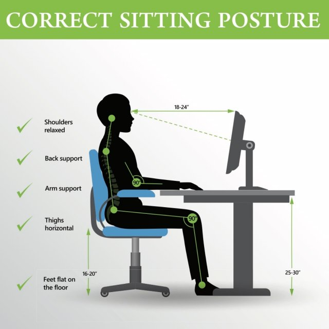 Anatomy of Sitting Well