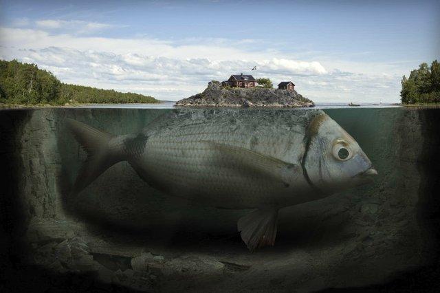 """Fishy Island"" by Erik Johansson"