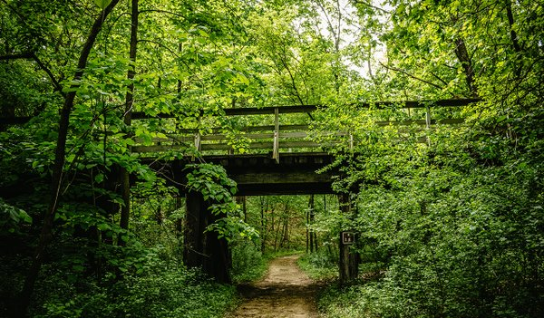 Afton State Park