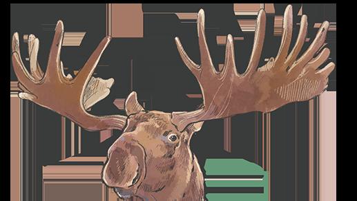 Moose-head.png