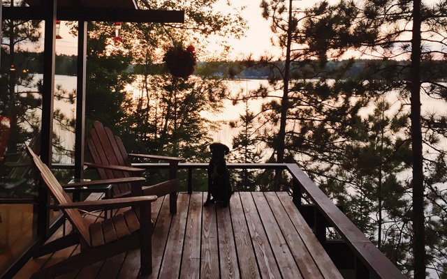 Black lab on a wooden deck at sunset